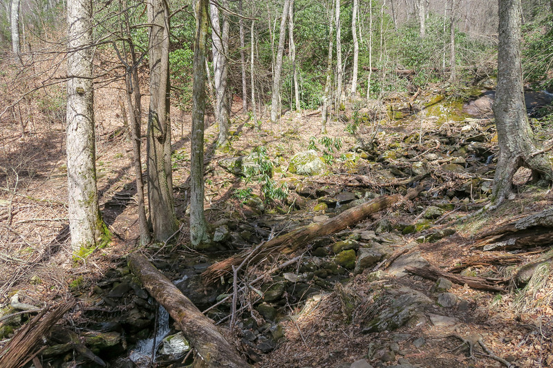 Shining Creek Trail -- 4,880'