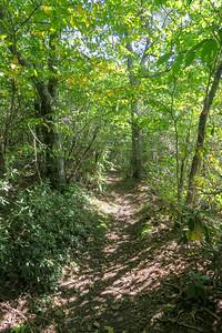 Little Pisgah Mountain -- 5,285'