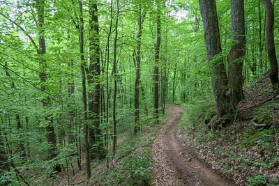 Sidehill Trail -- 2,660'