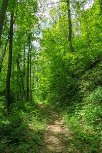 Sidehill Trail -- 2,770'