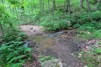 Sidehill Trail -- 2,780'