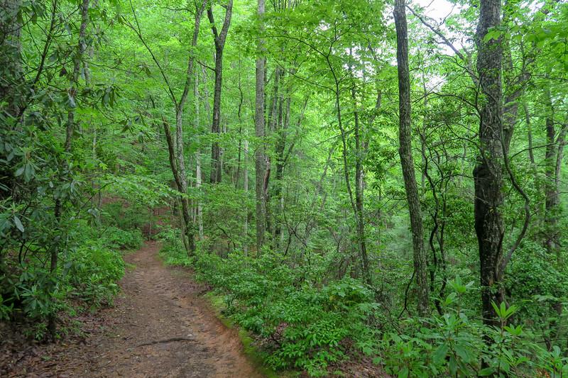 Sleepy Gap Trail -- 2,500'