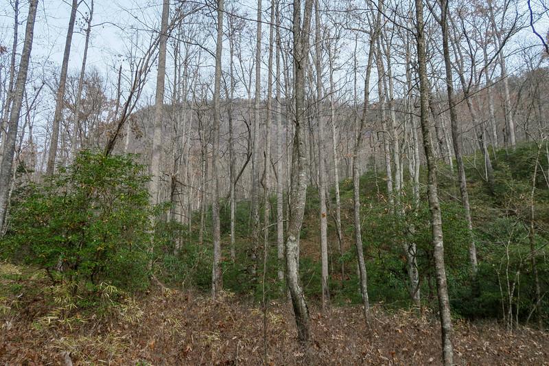 Slick Rock Falls Trail -- 2,920'