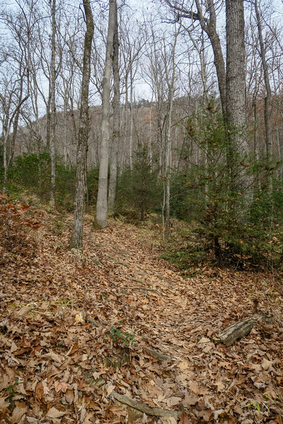 Slick Rock Falls Trail -- 3,000'