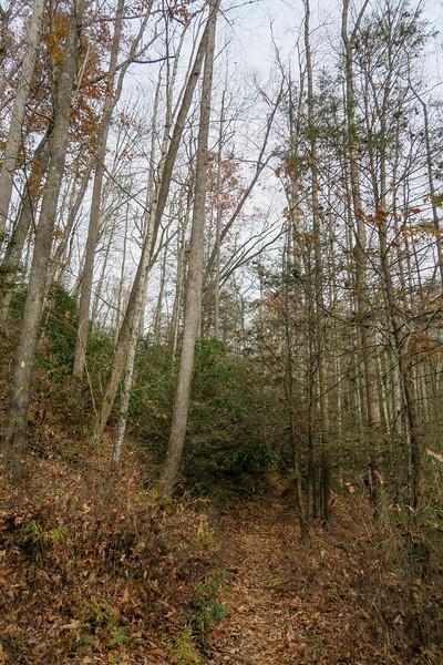 Slick Rock Falls Trail -- 2,760'