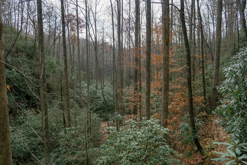 Slick Rock Falls Trail -- 2,830'