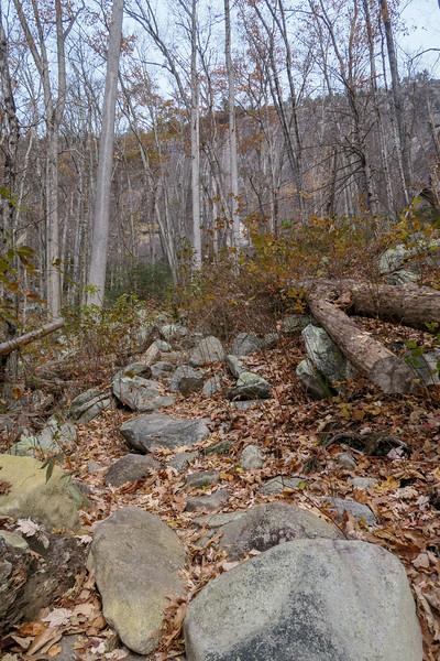 Slick Rock Falls Trail -- 3,150'