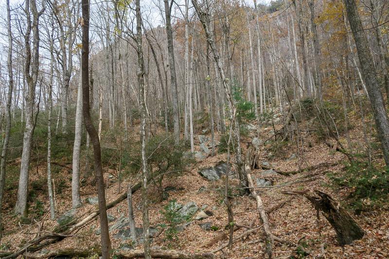 Slick Rock Falls Trail -- 3,120'
