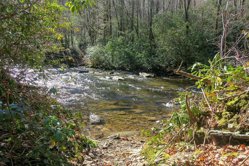 South Mills River Trail (Crossing #2) -- 2,900'