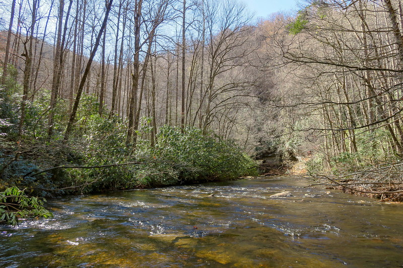 South Fork Mills River (Crossing #3) -- 2,860'