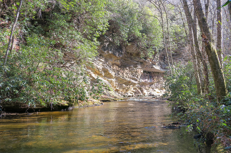 South Fork Mills River (Crossing #4) -- 2,830'