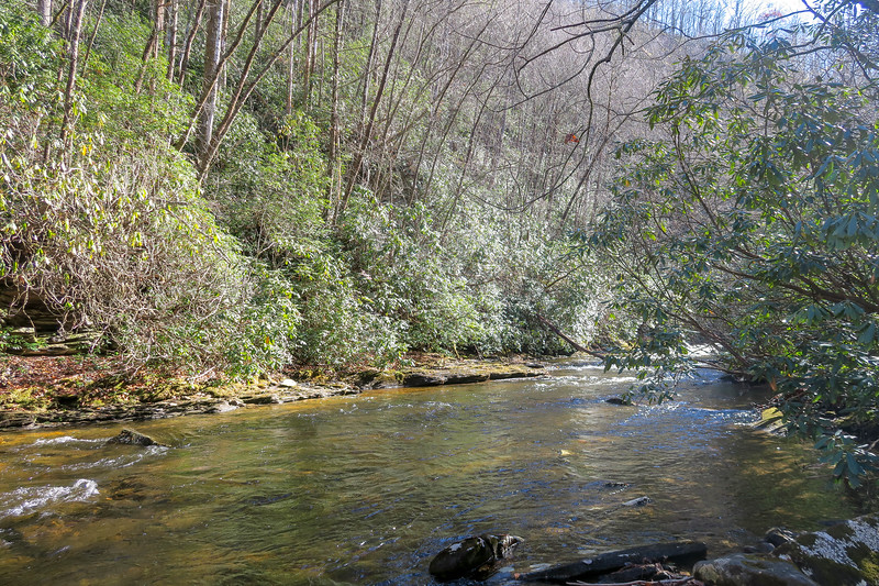 South Fork Mills River (Crossing #2) -- 2,900'