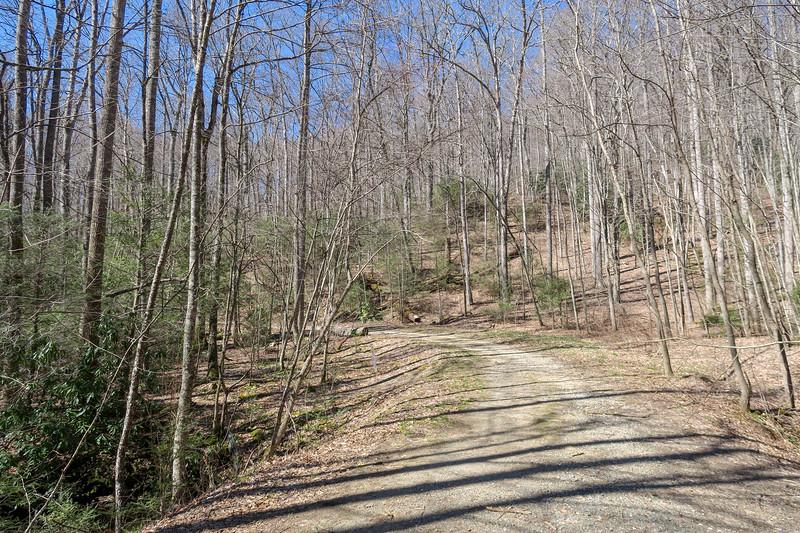 Spencer Branch Trail @ F.R. 5097 -- 2,760'
