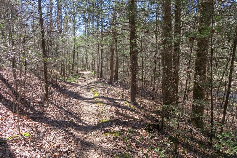 Spencer Branch Trail -- 2,660'