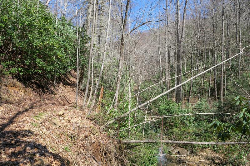 Spencer Branch Trail -- 2,620'