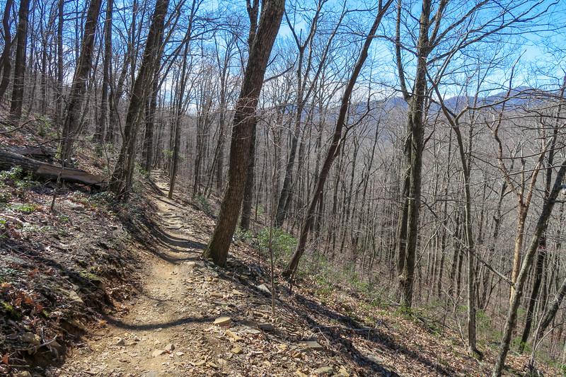 Spencer Branch Trail -- 3,120'