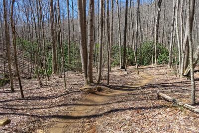 Spencer Branch Trail -- 2,800'