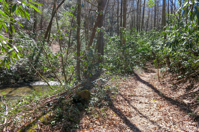 Spencer Branch Trail -- 2,580'