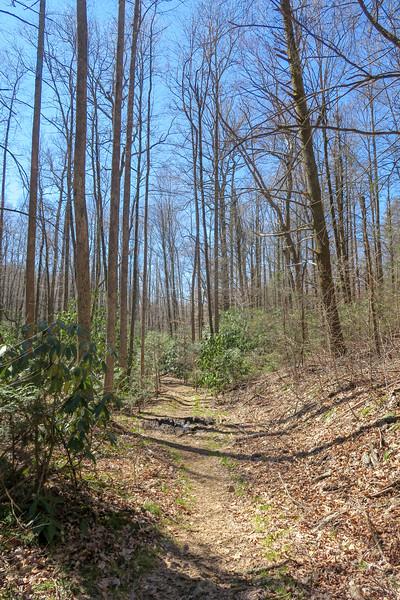 Spencer Branch Trail -- 2,730'
