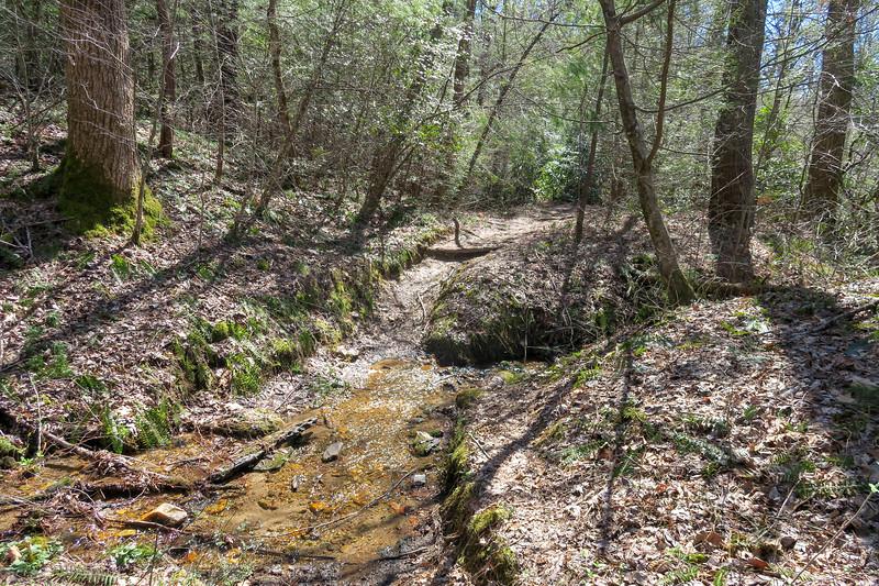 Spencer Branch Trail -- 2,630'