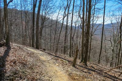 Spencer Branch Trail -- 3,250'