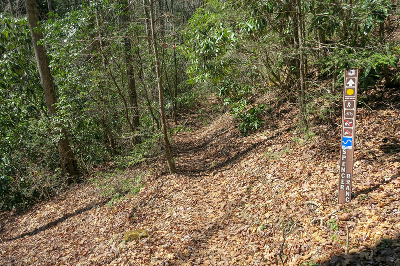 Spencer Branch Trail -- 2,480'
