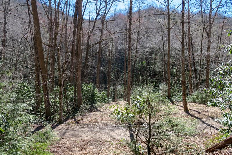 Spencer Branch Trail -- 2,470'