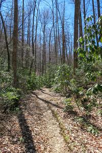 Spencer Branch Trail -- 2,720'