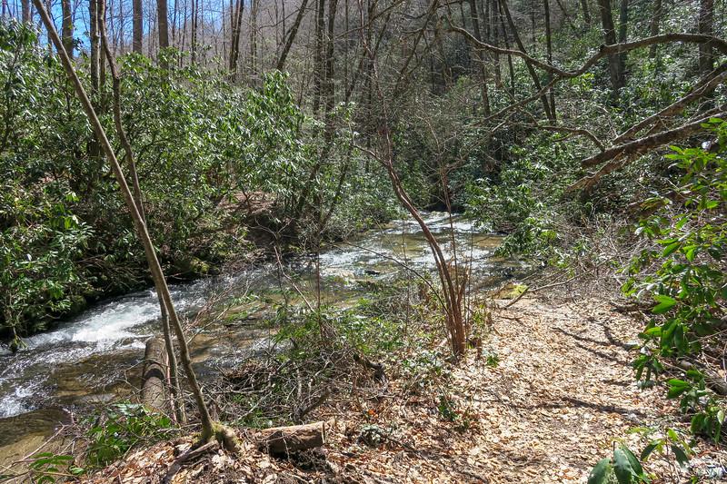 Spencer Branch Trail -- 2,520'