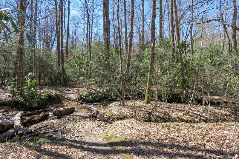 Spencer Branch Trail -- 2,670'