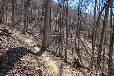 Spencer Branch Trail -- 3,000'