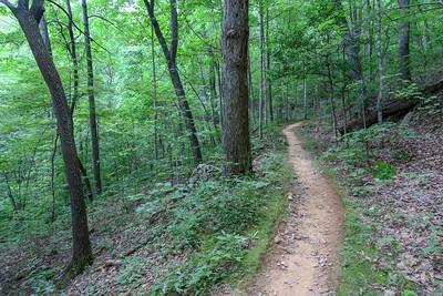 Spencer Gap Trail -- 3,150'