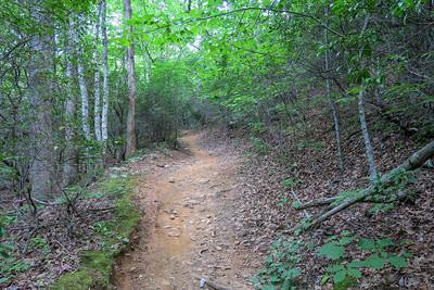 Spencer Gap Trail -- 3,100'