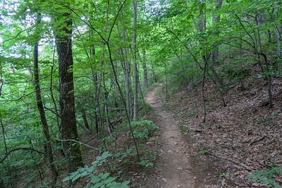 Spencer Gap Trail -- 3,280'