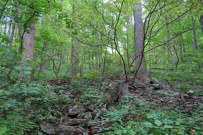 Spencer Gap Trail -- 3,260'