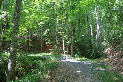 Spencer Gap Trail -- 2,860'