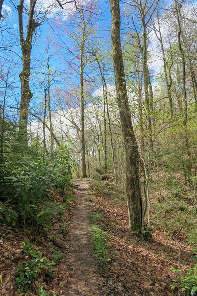 Squirrel Gap Trail -- 3,130'