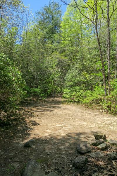 Squirrel Gap/Mullinax Trail Junction -- 2,850'