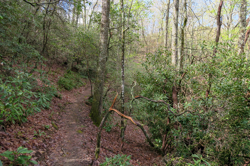 Squirrel Gap Trail -- 3,100'