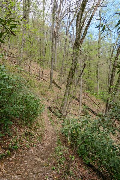 Squirrel Gap Trail -- 3,320'