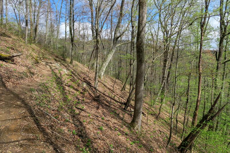 Squirrel Gap Trail -- 3,280'