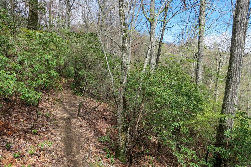 Squirrel Gap Trail -- 3,490'