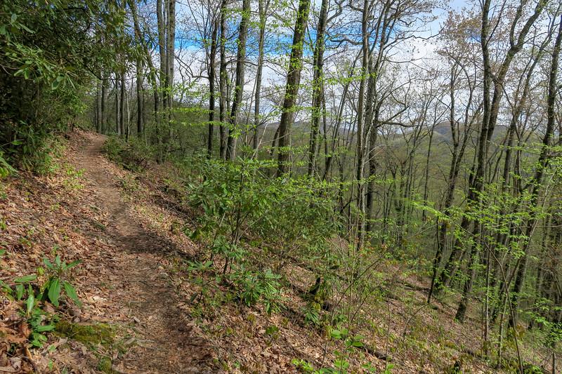 Squirrel Gap Trail -- 3,080'
