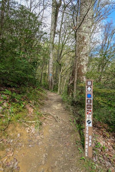 Squirrel Gap/Laurel Creek Trail Junction -- 3,040'