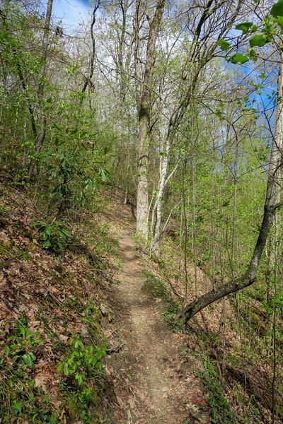 Squirrel Gap Trail -- 3,060'