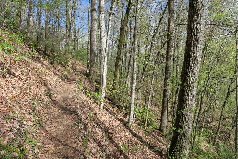 Squirrel Gap Trail -- 3,010'