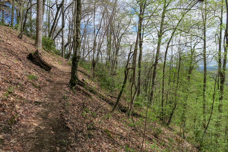 Squirrel Gap Trail -- 3,200'