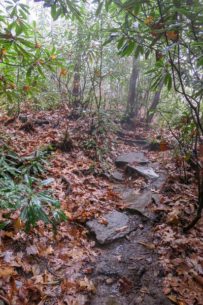 Sunwall Trail -- 3,300'