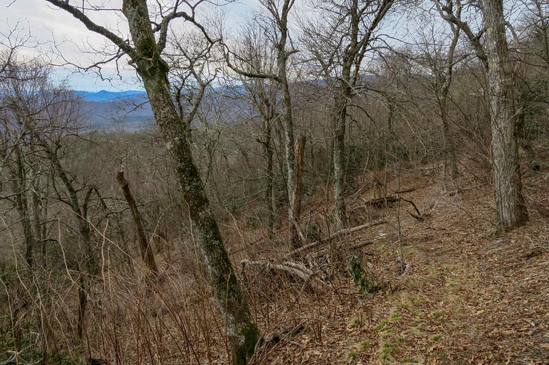 Thompson Creek Trail -- 4,880'