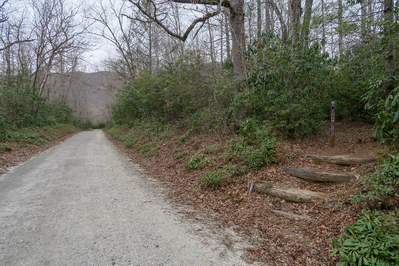 Thompson Creek Trailhead @ Yellow Gap Road -- 3,300'